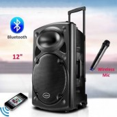 Rechargeable Bluetooth Karaoke Trolly Speaker With Wireless Microphone