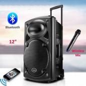 Rechargeable Bluetooth Karaoke Trolly Speaker With Wireless Microphone